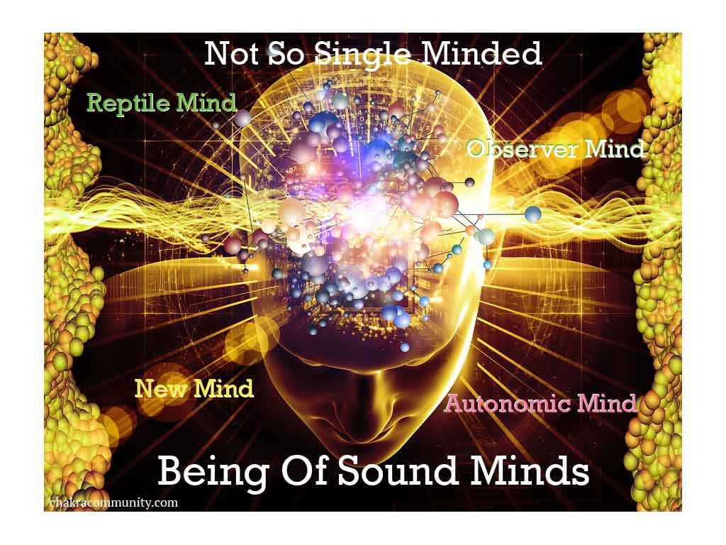 being-of-sound-minds-text